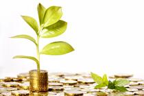 Konto oszczędnościowe – podstawowe informacje o rachunku